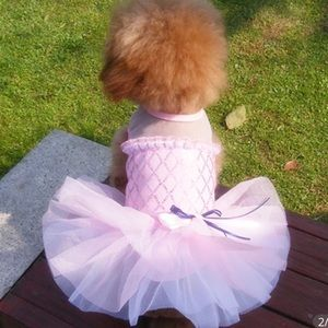 A pink pretty dress for puppies